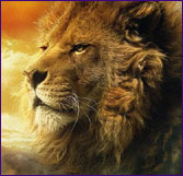 Picture of a very wise looking Lion